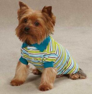 Dog Polo Shirt Top Brite Stripe East Side Striped Dog Polos Blue Raspberry