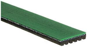 Serpentine Belt-Heavy Duty ACDelco Specialty K060795HD