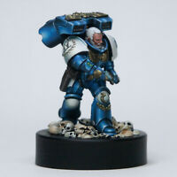 Pro painted Ultramarines Captain