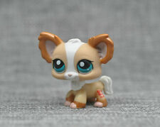 Littlest Pet Shop Tan & Bronze Shimmer Chihuahua Puppy #1082 Dog Blue Eye LPS