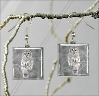 BIRD OWL IN WINTER SQUARE GLASS CABOCHON EARRINGS