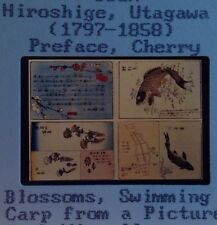 """Utagawa Hiroshige """"Preface, Cherry Blossoms"""" 35mm Japanese Ukiyo-e Art Slide"""