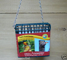 Droll Yankees Hanging Single Suet Cake Fruit Cage Feeder SF-S Single Suet Feeder