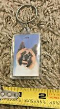 Akita Dog Key Chain