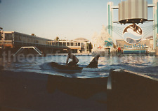 KILLER WHALE RIDE Vintage FOUND PHOTO Color FREE SHIPPING Original ORCA 7328