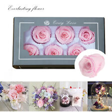 multiple colors Fresh Rose Flower 100% Real Natural Valentine's Day Wedding gift