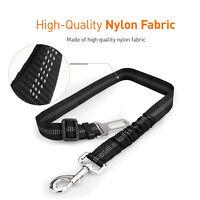 Elastic Pet Safety Belt Restraint Seat Belts Tethers for Small, Medium Large Dog