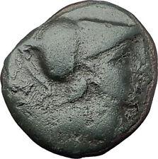 Antigonos II Gonatas 274BC Macedonia Ancient Greek Coin ATHENA PAN TROPHY i61633