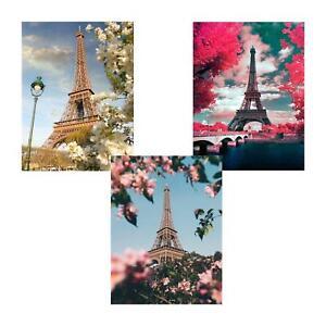 Paris Eiffel Tower Diamond Painting Full Drill Arts Craft Embroidery DIY Decor