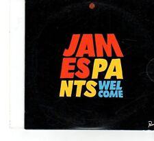 (FX52) James Pants, Welcome - 2008 DJ CD