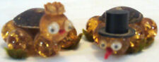 Really Old Mr & Mrs Turtle Real Turtle Shells Glass Ball Bodies Google Eyes Hats