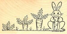 Carrot Tops And Bunny Easter, Wood Mounted Rubber Stamp NORTHWOODS - NEW, O8465