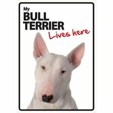 Bull Terrier Lives Here A5 Plastic Sign