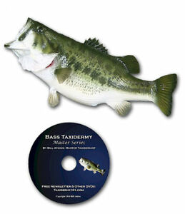 Fish Taxidermy School DVD By Master Taxidermist Bill Atkins filmed for beginners