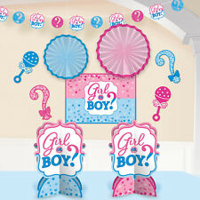 'Girl or Boy?' Baby Shower Gender Reveal Decorating Party Kit