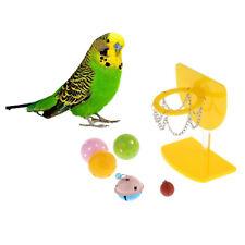 Parrot Toy Bird Intelligence Skill Training Basketball Hoop Plastic Ball
