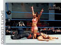 2011 WWE Champions #40 Layla