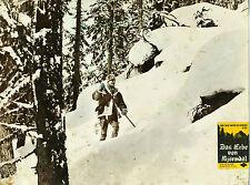 Af: Das Erbe von Björndal # B