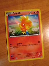 NM Pokemon TORCHIC Card BLACK STAR PROMO Set XY37 Hoenn Collection Box XY Holo