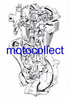 VELOCETTE  Viper/Venom Engine..Cutaway Drawing..A3 Print..Free Postage Worldwide