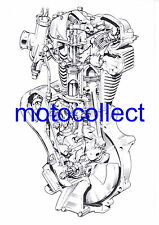VELOCETTE  Viper/Venom Engine..Cutaway Drawing..A3 Print..Free Postage Worldwide