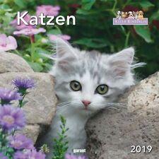 Keith Kimberlin Katzen 2019 - Monatskalender