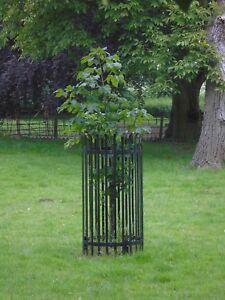 METAL TREE GUARD SIZE 2 - GALVANISED FINISH