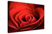 HEART RED ROSE PRINTS CANVAS PICTURES WALL ART FLOWERS POSTERS FLORAL CANVASES
