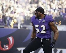 """RAY LEWIS Last Final Home Game 1-6-2013 """"Baltimore Ravens"""" LICENSED 8x10 photo"""