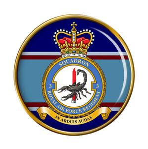 RAF Regiment 3 Squadron Pin Badge