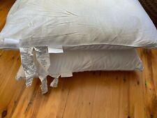 2 $690 Frette Cortina White Goose Down & Feathers Pillow 380 Thread Count Cotton