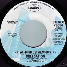 DELEGATION Welcome To My World ((**NEW 45 DJ**)) from 1980