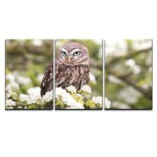 """Wall26 - Owl Stand on Flowers - Canvas Art Wall Decor - 16""""x24""""x3 Panels"""