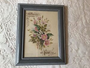 Framed Print. Wild Roses & Lilies of the Valley. Paul Jerrard Lithographer.