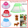 Pet Dog Cat Elizabethan Collar Wound Healing Collar Protection Anti-Bite Cone