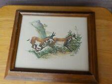 Vtg Frederick Sweney 3D Embossed Antelope Framed Print