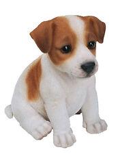 Vivid Arts mascota pal Perros Jack Russell Cachorro