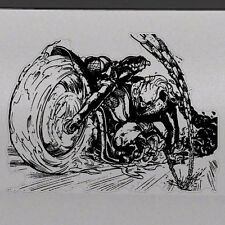 1x Ghost Rider Graphic Tailgate Hood Window Decal Vehicle Truck Vinyl Motorcycle