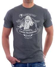 Le seigneur des anneaux gandalf feux d'artifice express eagle transport t-shirt gris TC9811