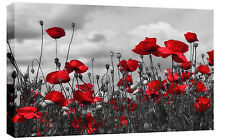 LARGE RED GREY POPPIES BOX CANVAS WALL ART PICTURE 87 x 52 cm 3 cm frame