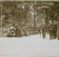 Francia Giardino Zoo Foto Stereo PL46Th1n1 Placca Da Lente Vintage C1925