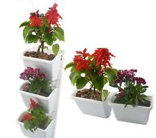 Vertical Garden Rigid PP Growing Kit 2 Frames Set 6 Pots for Living Wall Display