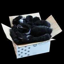 Peau D'agneau Fourrure De Mouton Reste 1,5 kg noir Accessoires de bricolage