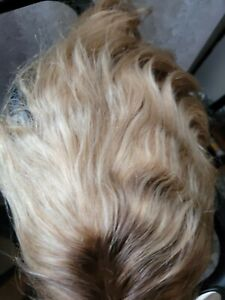 Human Hair Ombre/ash Blonde Wig 16in 150% Density