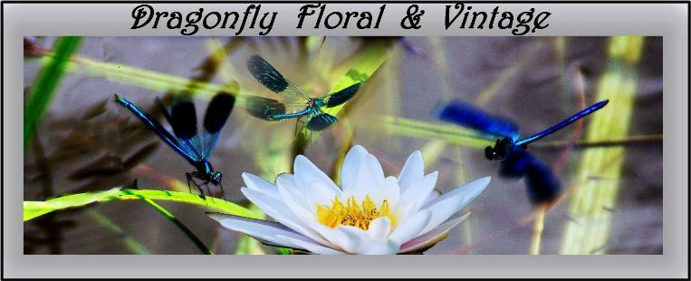 Dragonfly Floral