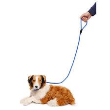 Laisse rétractable (à enrouleur) bleus pour chien