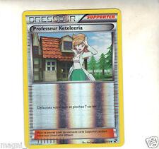 Pokemon  n° 101/114 - Dresseur - Professeur Keteleeria (A1487)