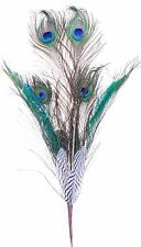 """Peacock Pheasant Feather Pick Spray Stem 27"""" Natural Floral Craft Decor New 160f"""
