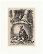Ein Erlebniß beim Fuchsfang G. Sundblad Fangeisen Holzstich Jagdzeitung 0246