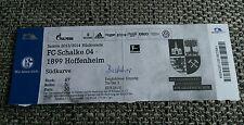 Eintrittskarte Ticket  FC Schalke 04 - 1899 Hoffenheim 2013/14